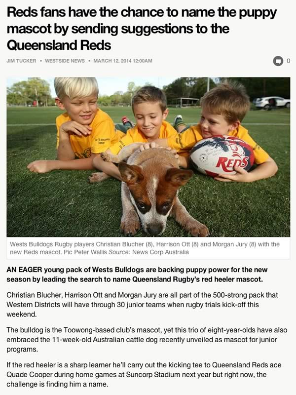Westside News article March 2014