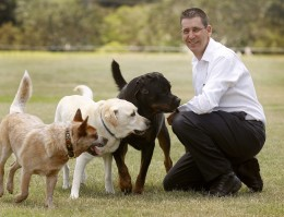 Justin Jordan trains dogs and their owners for safety in dog parks.