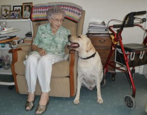 Lex the labrador chats to a nursing home resident