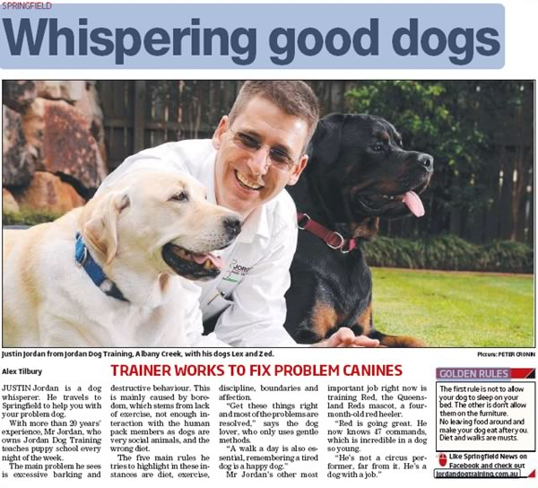 Dog whisperer article