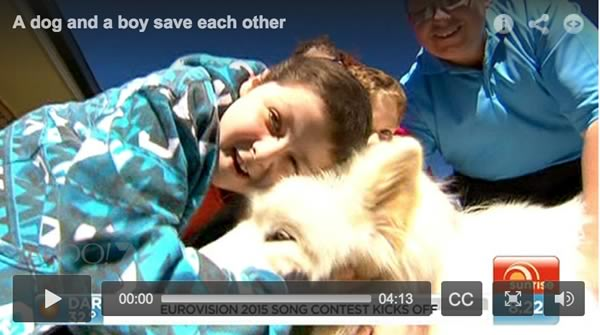 Dog and boy video screenshot