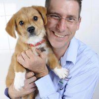 Jordan dog training puppy preschool