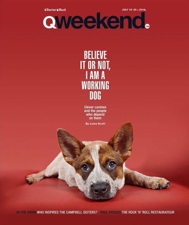 Red Dog on cover of QWeekend