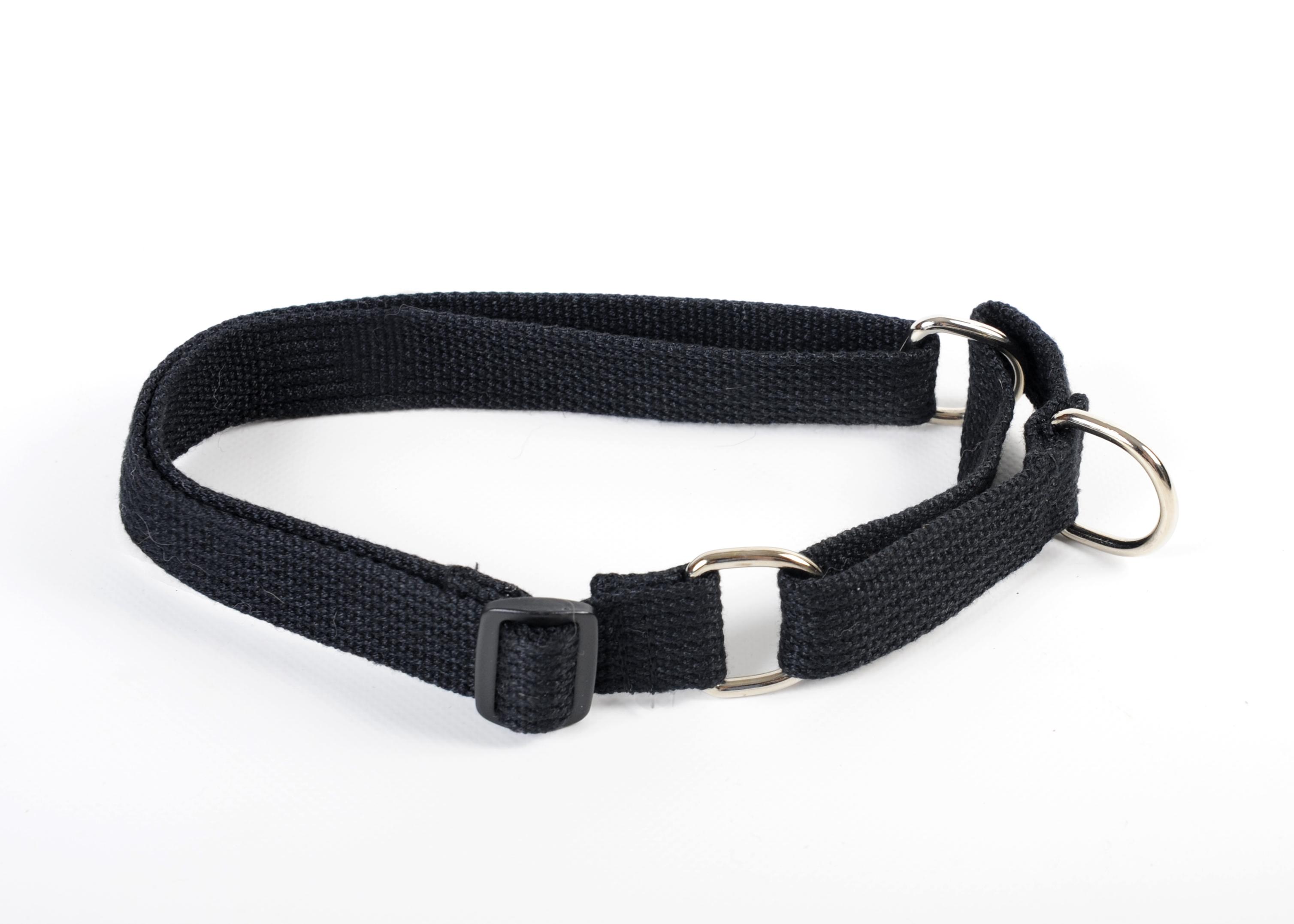Limited Slip Dog Collar