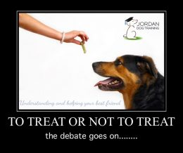 Dog receiving a treat in positive reinforcement training