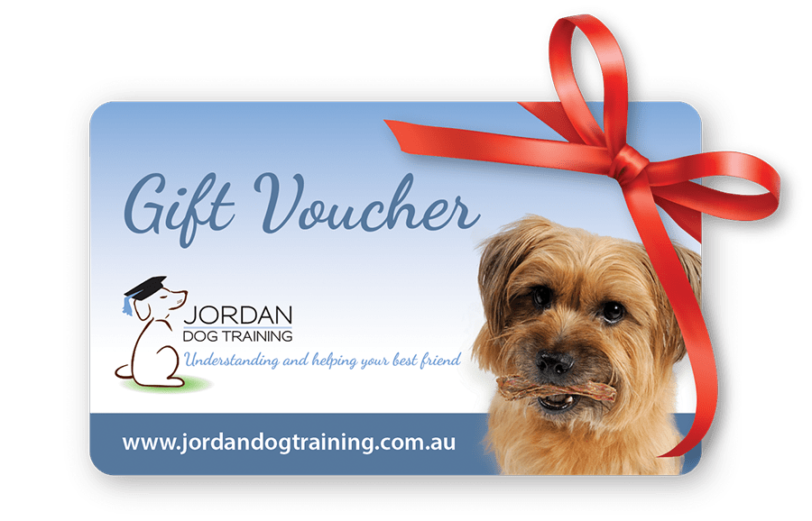 Can You Get Red Dog Gift Vouchers