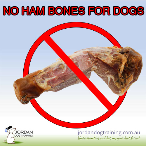 No ham bones for dogs