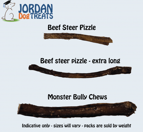 Beef Bully Pizzles - Extra Long