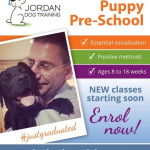 Puppy School is the best place to start your education
